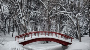 WinterBridge