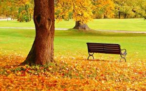 AutumnDay2