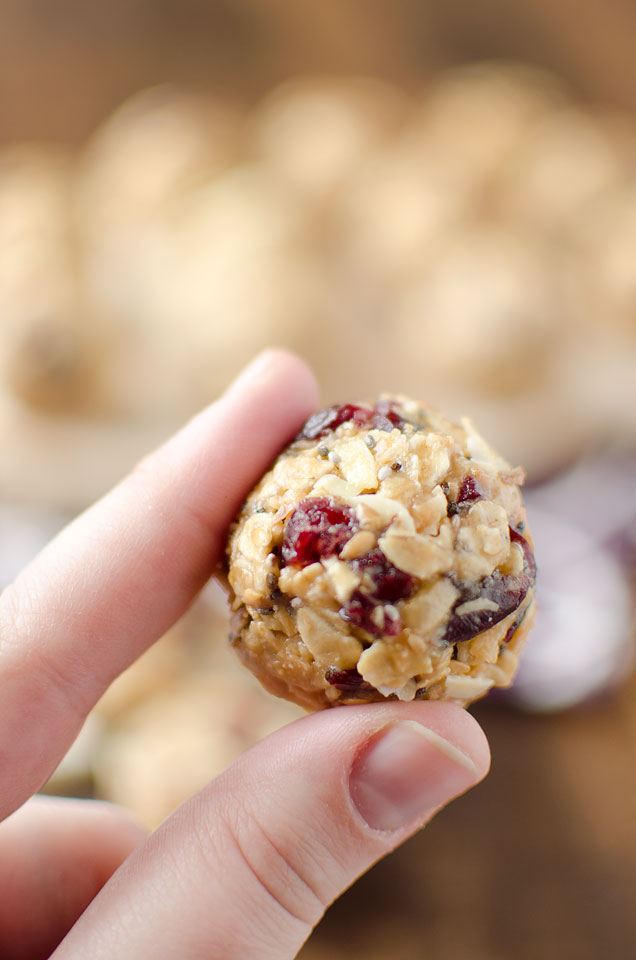 Oatmeal Almond Cranberry Protein Bites Two Cans On A String