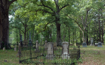 Finding Comfort At The Cemetery